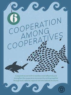 7 Co-op Principles -- no. 6