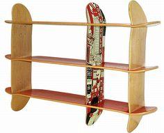 skate bookshelves
