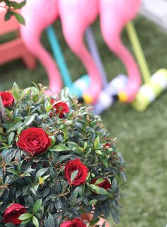 Make Your Own Alice in Wonderland Croquet Set with Red Rose Topiary