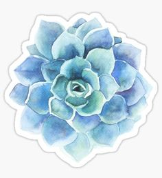 Watercolor blue tones succulent illustration Sticker