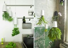 15 Clever Solutions for Small Spaces via Brit + Co. | Sky Planters! Plant and hang your fresh herbs upside down to conserve space in your kitchen