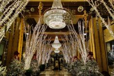 See the halls decked at the Roosevelt Hotel - a place where memories begin, especially during the holiday season.