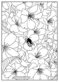 Free coloring page coloring-adult-cherry-tree-by-mizu. Cherry tree, Exclusive coloring page, by Mizu