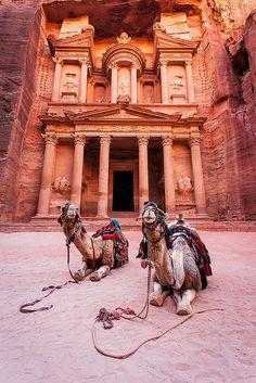 Ancient Petra in Jordan #Camels