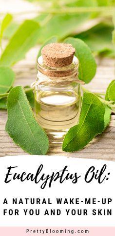 Eucalyptus Essential Oil For Skin - Gesunder Lebensstil Facial For Dry Skin, Facial Wash, Eucalyptus Oil, Eucalyptus Essential Oil, Skin Care Remedies, Acne Remedies, Essential Oils For Skin, Dandy, Perfect Skin