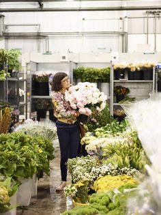 Cecilia Fox - Flowermarket