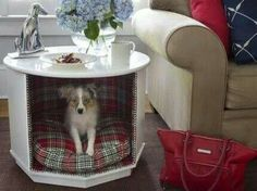 Old school end table dog bed