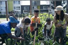 The Urban Farm Program Educating and Uplifting East Oakland Kids | Civil Eats