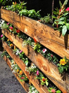 DIY Palette Garden.  My friend and I created this beautiful palette garden for my backyard.  Recycled palettes turns into a wonderful garden wall. Thank you for Pinterest for the great idea!