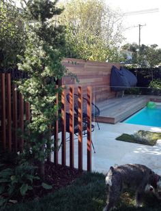 A modern classic pool www.babylongardens.co.nz
