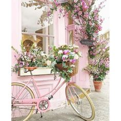 Best European style homes revealed. The Best of shabby chic in Dreamy Bathroom & Kitchen Remodel Ideas Is a Must in Summer Homes Latest Interior Design Ideas. Best European style homes revealed. The Best of shabby chic in Pretty In Pink, Pretty Flowers, Pink Flowers, Flowers Gif, Vintage Flowers, Vintage Floral, Pink Aesthetic, Aesthetic Vintage, Belle Photo