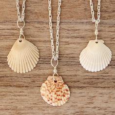 colgantes de conchas marinas
