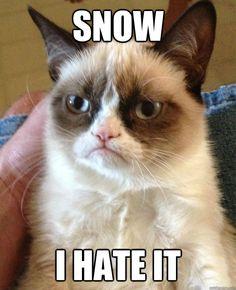 Snow, I hate it.