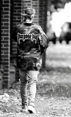 Justin Beiber purpose