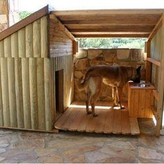 Dog house for outside dog
