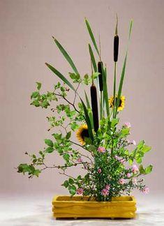 ikebana. Japanese art of flower arrangement. Plus