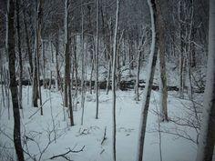 Winter, Northern Michigan