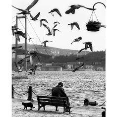.@Mustafa Seven | Ortakoy / Istanbul #turkey #mustafaseven | Webstagram