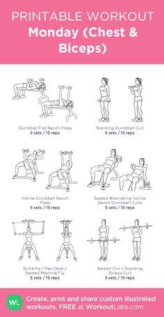the bowflex body plan pdf download free