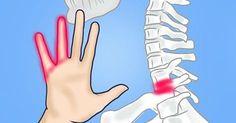 Každý z nás sa už raz stretol s pocitom stŕpnutých rúk alebo nôh, sprevádzaný miernym brnením či pálením. Často za tým stojí prerušenie krvného obehu v dôsledku stlačenia ciev a nervových zakončení…