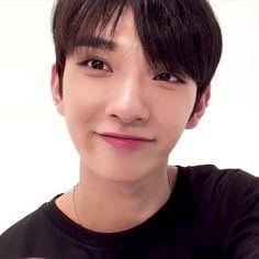 Seventeen Joshua Our little English speaking boy Jisoo Seventeen, Joshua Seventeen, Seventeen Memes, Jeonghan, Woozi, Wonwoo, Hiphop, Vernon Chwe, Selca