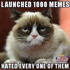 Afbeeldingsresultaat voor i hate cat memes