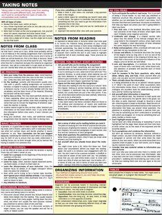 essay planning web