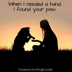 When I needed a hand I found your paw! Dogs are Beautiful!!! #dogs