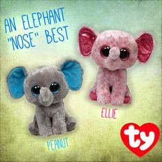 These two elephants definitely know what's best! Build your own herd of elephants with Ellie and Peanut!