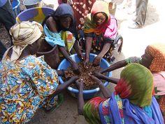 Programa de reforzamiento local de productoras agrarias en Hadjer Lamis