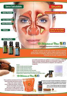 SINUSITIS, MUY MOLESTA Y PUEDE LLEGAR A SER DOLOROSA… La aromaterapia puede funcionar como una forma natural para aliviar los síntomas de la sinusitis y disminuir su recurrencia, sin los efectos secundarios que incluyen algunos medicamentos prescritos. Existen aceites esenciales que tienen propiedades antiinflamatorias como antisépticas o antimicrobianas, que realmente ayudan a aliviar los síntomas. My Doterra, Doterra Essential Oils, Young Living Essential Oils, Essential Oil Blends, Doterra Slim And Sassy, Oils For Sinus, Esential Oils, Doterra Recipes, Aromatherapy Recipes