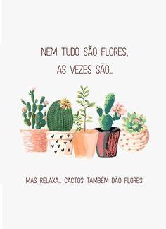 Como cultivar suculentas, decorar a casa com suculentas, lembrancinhas de suculentas Motivational Phrases, Magic Words, More Than Words, Hand Lettering, Place Card Holders, Positivity, Messages, Thoughts, Prints
