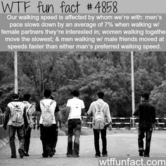 WTF Facts : funny, interesting & weird facts — How our walking speed is determined - WTF fun. Wow Facts, Wtf Fun Facts, True Facts, Funny Facts, Random Facts, Crazy Facts, Random Things, Funny Things, Random Stuff