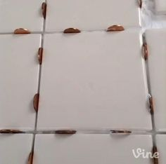 Setting tiles? Use pennies as spacers. They're easy to remove. #lowesfixinsix