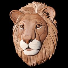CT-2 Lion