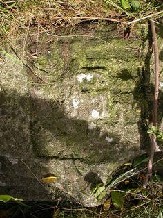 Partie d'arc en anse de panier sur laquelle est figurée un écu où les armes des Chohant (d'argent au cerf passant de gueules) brochent un écartelé de leurs diverses alliances : Bino (vers 1500, trois hures de sanglier), Le Grillon de Rosnarho (vers 1525, croix ancrée) et sans doute Kerambarh (trois fasces).