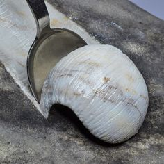 Avete mai provato un gelato al gusto Marmo? • @jago.artist - Eataly -2016, marmo di fiume. • @eatalygram @artefiera_bologna • #jago #jagoart #jagoartist #jagosculpture #sculpture #art #artist #contemporaryart #marble #icecream #eataly #instaart #instasculpture #picoftheday