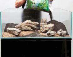 A thoroughly modern aquascape - Practical Fishkeeping Home Aquarium, Aquarium Design, Aquarium Fish, Fish Aquarium Decorations, Tropical Fish Tanks, Betta Fish Tank, Rock Decor, African Cichlids, Planted Aquarium