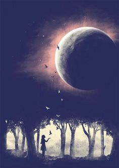 Moonlight and child with birds.