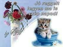 Good Morning Good Night, Frases, Figurative, Good Morning