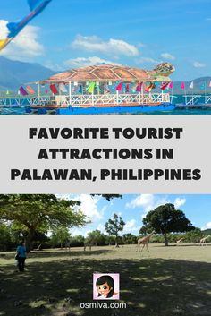 Palawan, Philippines. Travel Destination. Travel Ideas. Asia Travel. Tourist Attractions in Palawan, Philippines.
