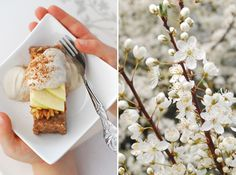 Asian Pear & Green Apple Raw Tart w/ Apple Cream-Japan in our Hearts   The Alkaline Sisters