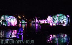 River of Lights at Disney's Animal Kingdom.