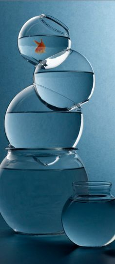 tiered fish bowl