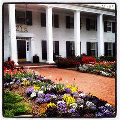 University of Arkansas ZTA house