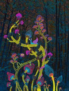 Magic Mushrooms on Behance
