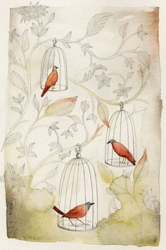 Janice Nadeau - Illustrations