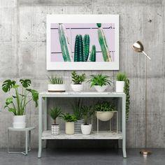Mexican Decor Modern Art Print Pink Printable Cactus Print | Etsy Cactus Wall Art, Cactus Print, Modern Art Prints, Plant Wall, Printable Wall Art, Wall Prints, Modern Decor, Pink, Mexican
