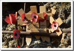 poppies in flanders fields (3)