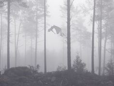 Falling up by Victoria Siemer. So witchy! #digitalphotography #surrealist